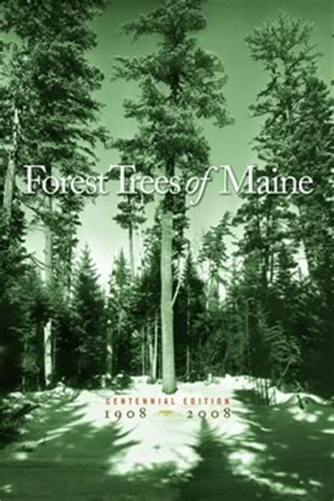 Forest Trees of Maine: Handbooks & Guides: Publications
