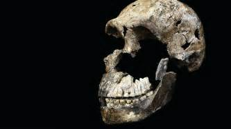 This mysterious human species lived alongside our
