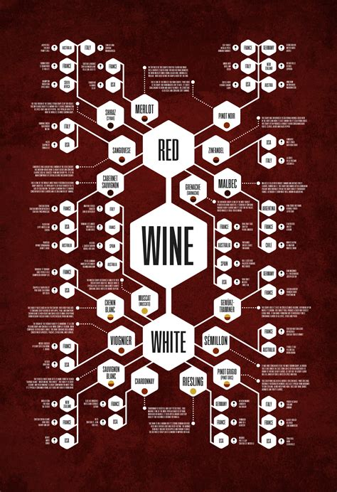 The Wine Diagram Thoroughly Records the Perplexing World