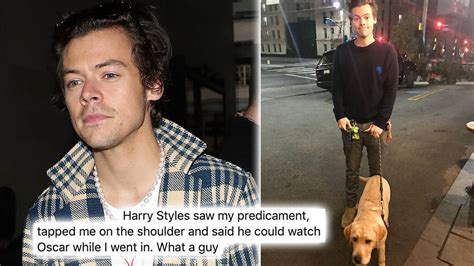 Harry Styles Offered To Watch A Fan's Dog Outside A